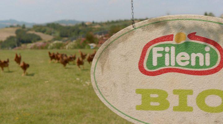 Fileni, il pollo Bio senza allergeni