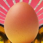 Pelle perfetta cercasi? L'albume d'uovo sulla pelle è la soluzione, provare per credere