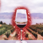 Alla scoperta del broccoletto di Custoza, il tesoro che cresce tra le vigne veronesi