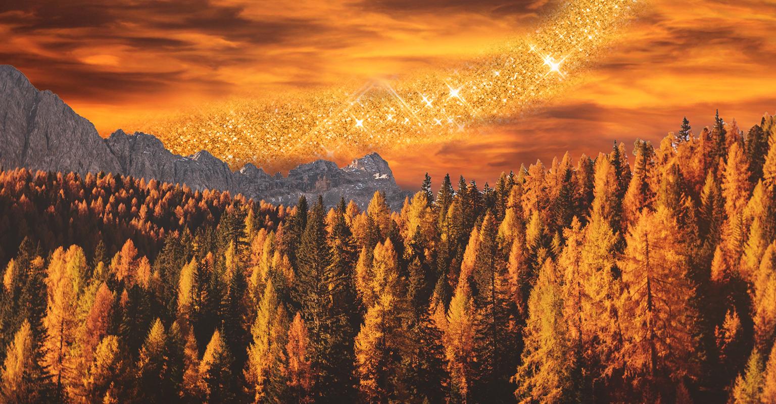 Foliage in Italia, le passeggiate per meravigliarsi davanti ai colori della natura