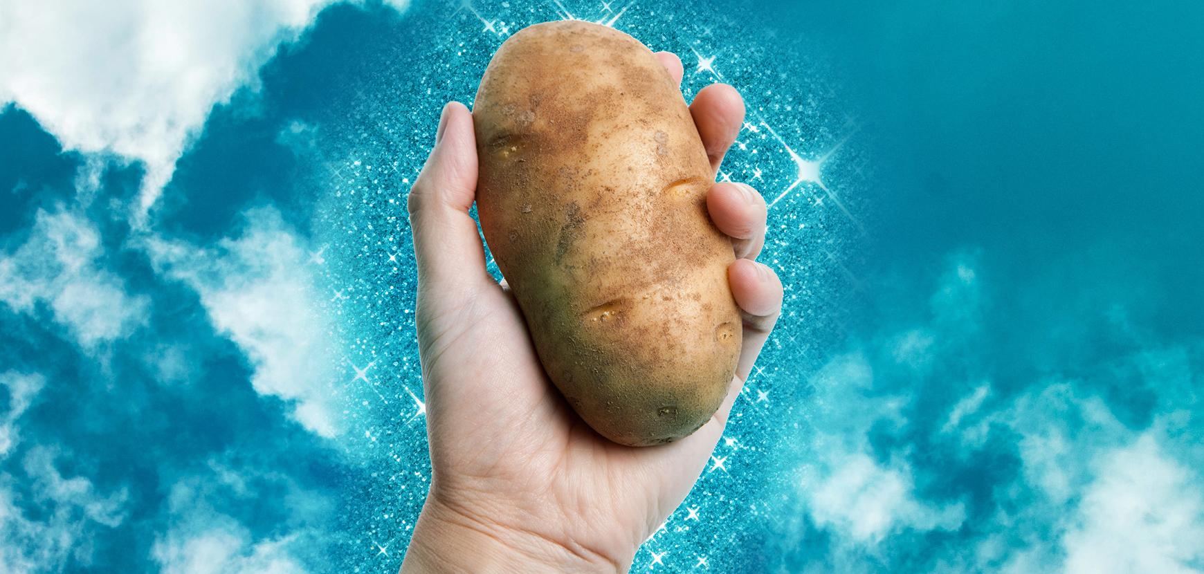 Potato plastic, se le buste e le posate sono fatte di patate